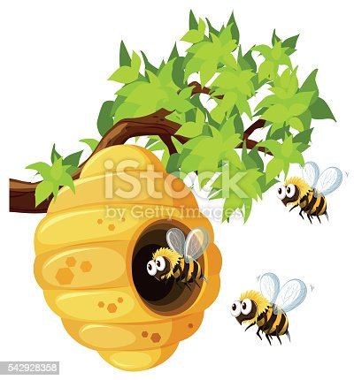 Bees flying around beehive