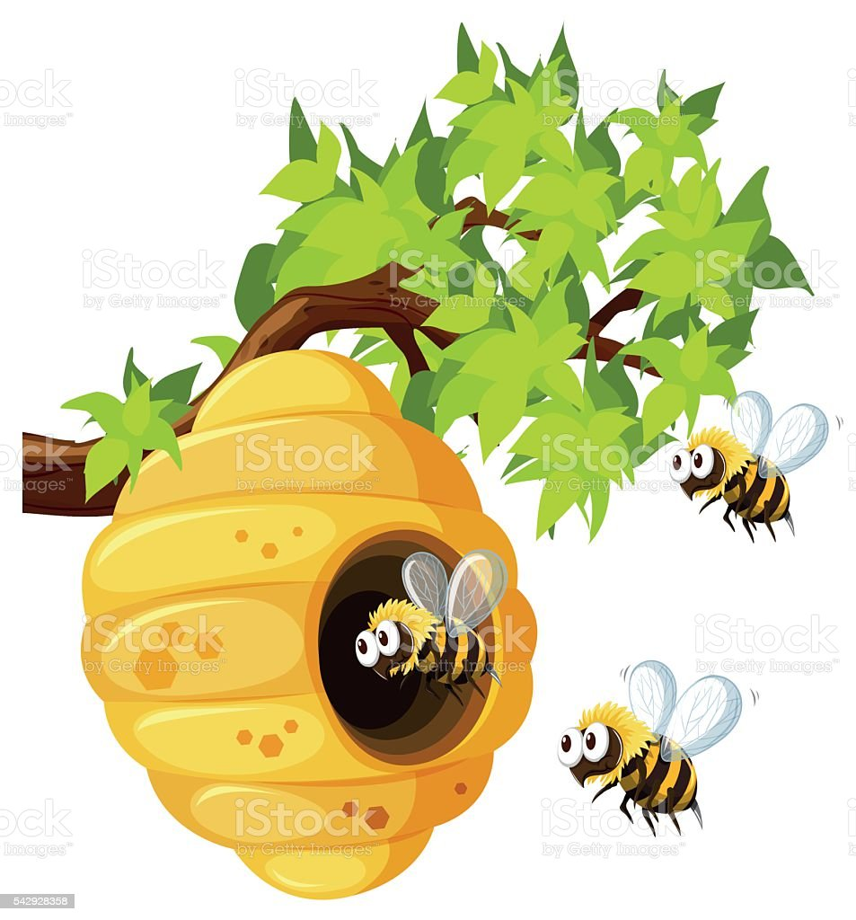 Bees flying around beehive vector art illustration
