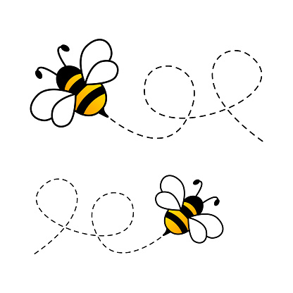 Bees flying on dotted route.