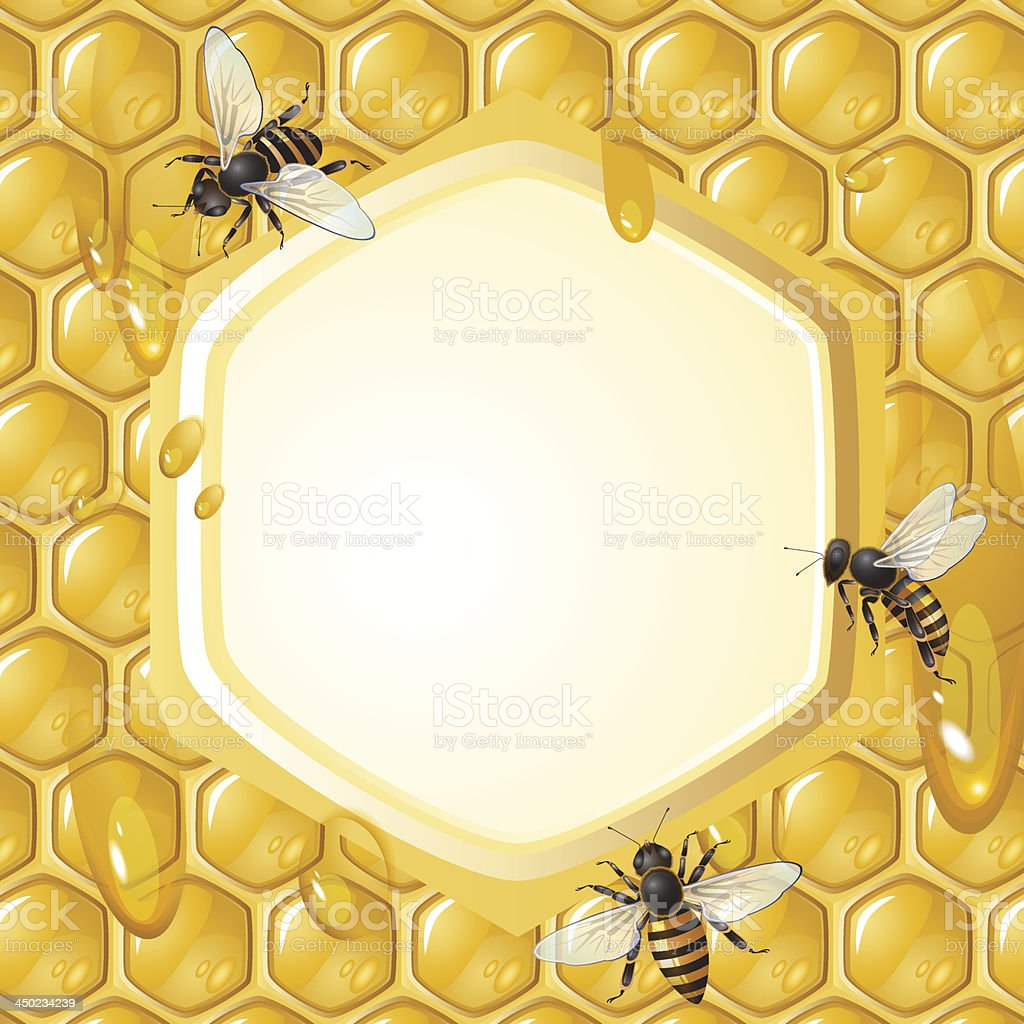 Bees on honeycombs royalty-free stock vector art