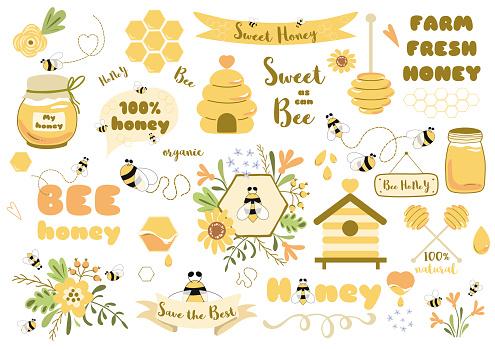 Bees set honey clipart Hand drawn bee honey elements Hive honeycomb pot beekeeping Text phrases illustration