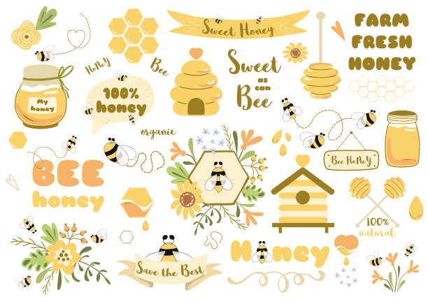 Bees set honey clipart Hand drawn bee honey elements Hive honeycomb pot beekeeping Text phrases illustration Bees set Cute honey clipart Hand drawn bee honey elements Hive honeycomb pot spoon beekeeping Text phrases in ribbon wreath Floral bee bouquet. Sticker tag icon logo Honey design Vector illustration. beehive stock illustrations