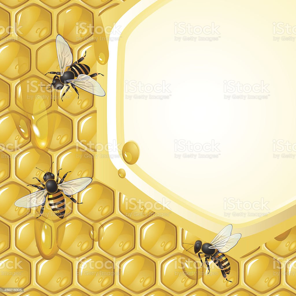 Bees working on honeycomb royalty-free stock vector art