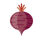 Beet Flat Design Vegetable Icon