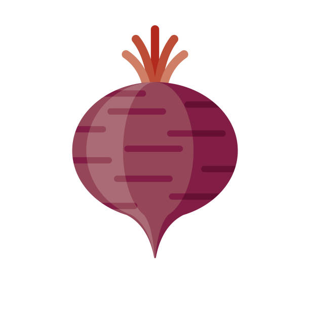 Beet Flat Design Vegetable Icon A flat design styled vegetable icon with a long side shadow. Color swatches are global so it's easy to edit and change the colors. File is built in the CMYK color space for optimal printing. beet stock illustrations