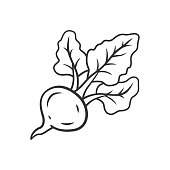 Beet linear icon. Agriculture plant. Soup ingredient. Vitamin. Diet. Healthy food. Vegan nutrition. Thin line illustration. Contour symbol. Vector isolated outline drawing. Editable stroke
