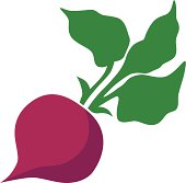 A vector illustration of a beet with leaves.