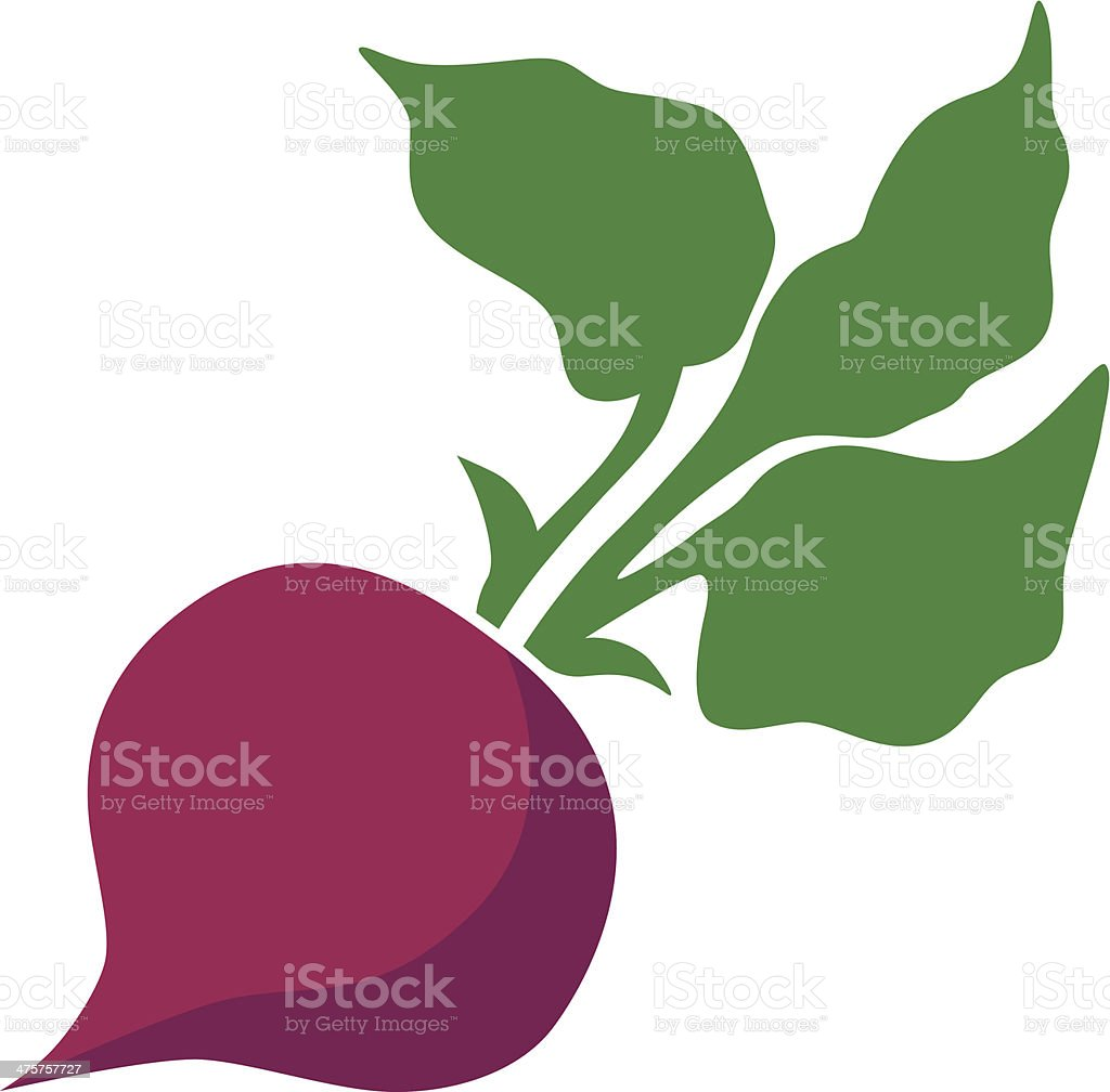 beet with leaves vector art illustration