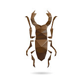 Beetle abstract isolated on a white backgrounds, vector illustration