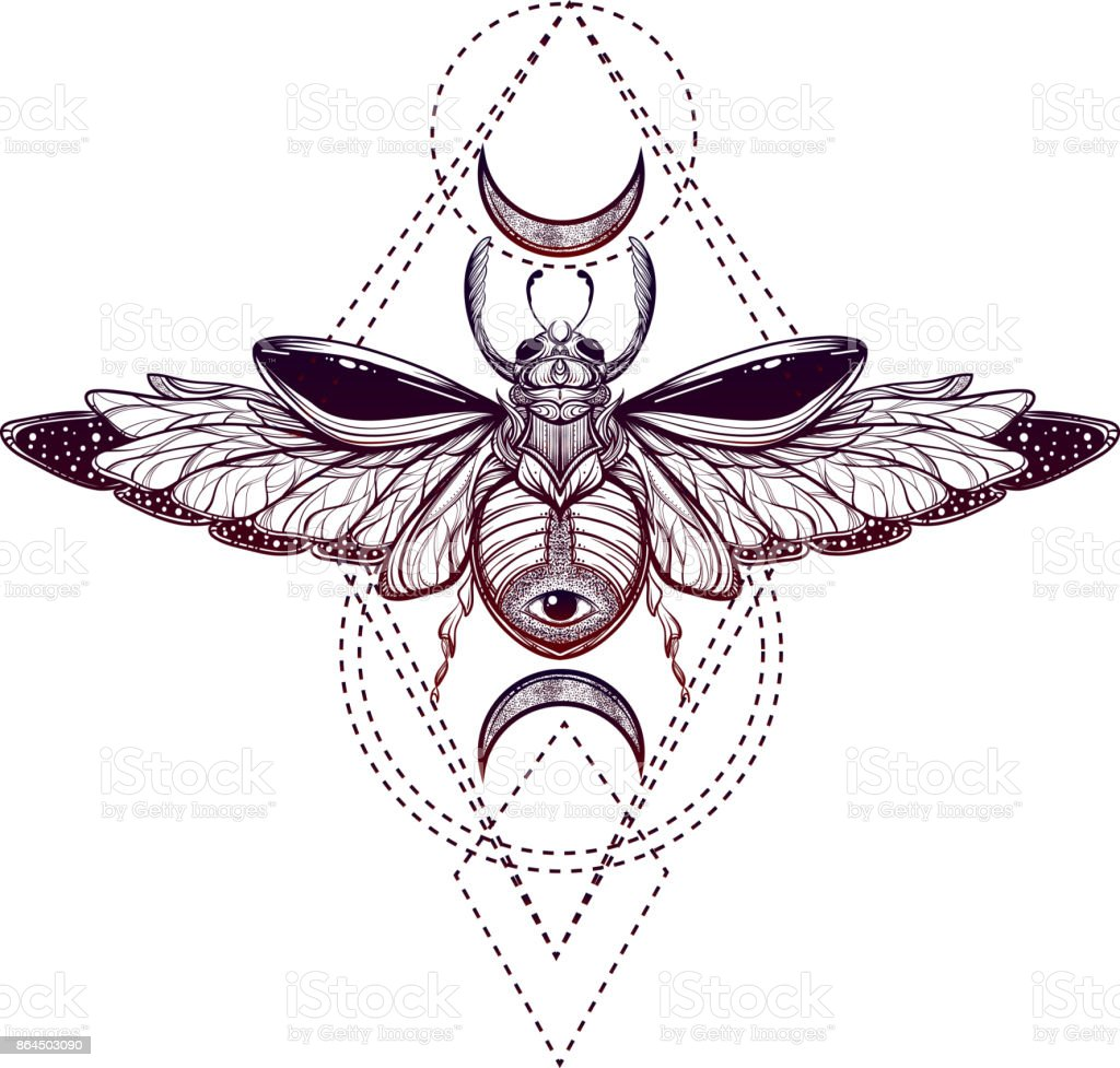 beetle bug tattoo drawing scarab bug illustration stock vector art