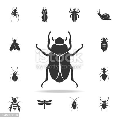 beetle. Detailed set of insects items icons. Premium quality graphic design. One of the collection icons for websites, web design, mobile app on white background