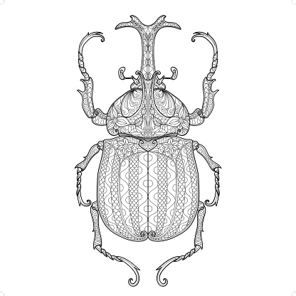 beetle doodle pattern 2