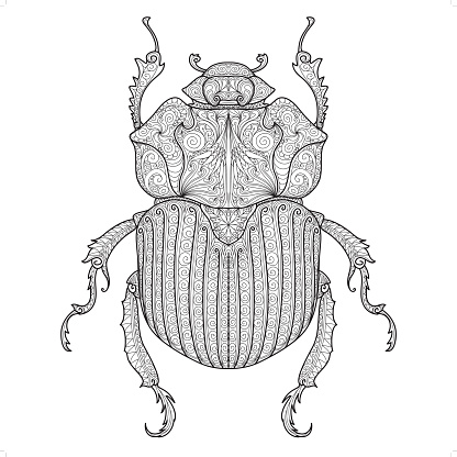 beetle doodle pattern 3