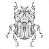 A beetle coloring design.