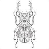A beetle doodle coloring design.