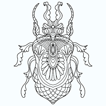 beetle drawn with abstract floral ornaments in folk style on a white background for coloring, vector, insect