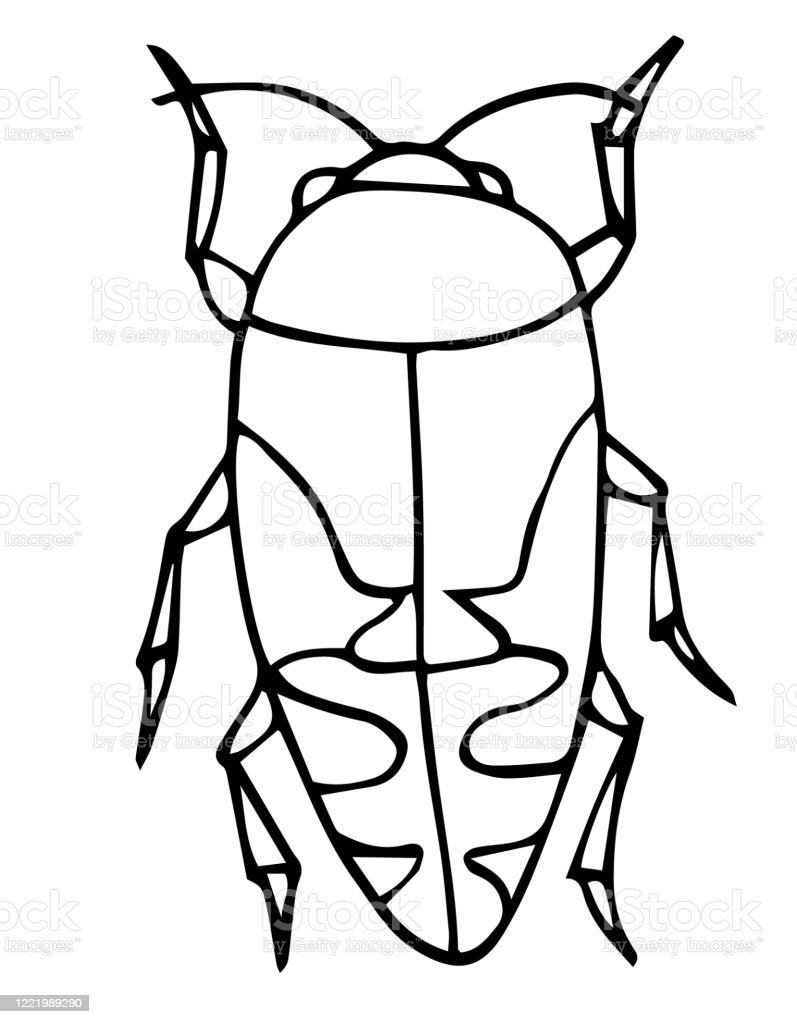 - Beetle Insect Outline Vector Icon Easy Coloring Book For Kids
