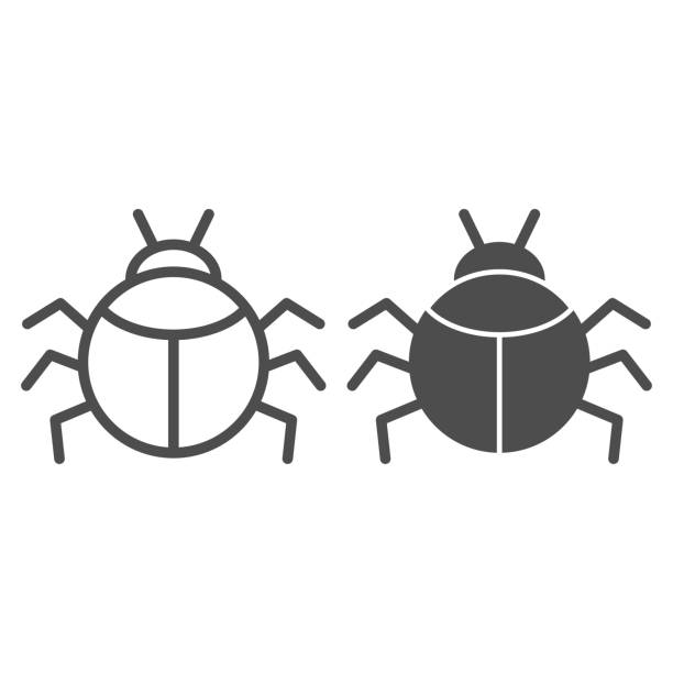 Beetle line and solid icon, Insects concept, bug sign on white background, round shaped beetle silhouette icon in outline style for mobile concept and web design. Vector graphics. Beetle line and solid icon, Insects concept, bug sign on white background, round shaped beetle silhouette icon in outline style for mobile concept and web design. Vector graphics arachnid stock illustrations