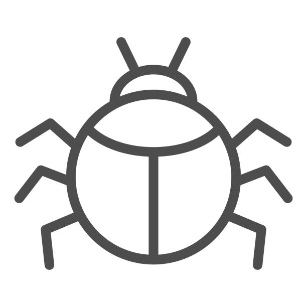 Beetle line icon, Insects concept, bug sign on white background, round shaped beetle silhouette icon in outline style for mobile concept and web design. Vector graphics. Beetle line icon, Insects concept, bug sign on white background, round shaped beetle silhouette icon in outline style for mobile concept and web design. Vector graphics arachnid stock illustrations