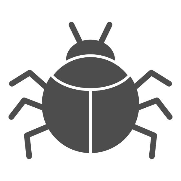 Beetle solid icon, Insects concept, bug sign on white background, round shaped beetle silhouette icon in glyph style for mobile concept and web design. Vector graphics. Beetle solid icon, Insects concept, bug sign on white background, round shaped beetle silhouette icon in glyph style for mobile concept and web design. Vector graphics arachnid stock illustrations
