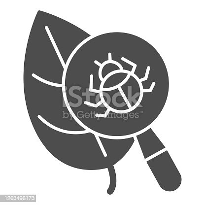 Beetle under magnifying glass on leaf solid icon, Allergy concept, Insect under magnifier sign on white background, Search parasites under magnifier icon in glyph style. Vector graphics