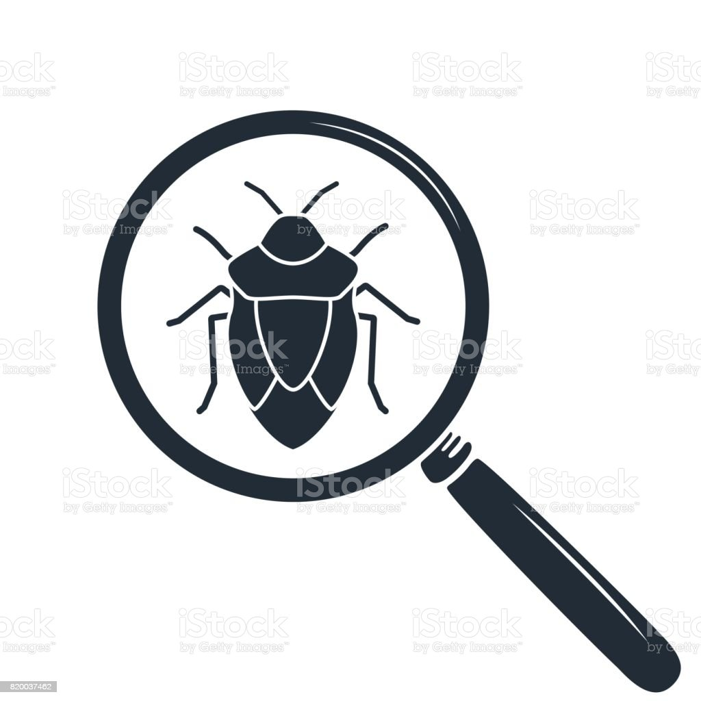 Beetle under the magnifying glass. Insect icon vector art illustration