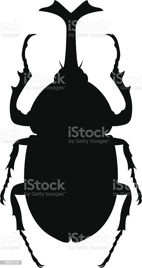 beetle royalty-free stock vector art
