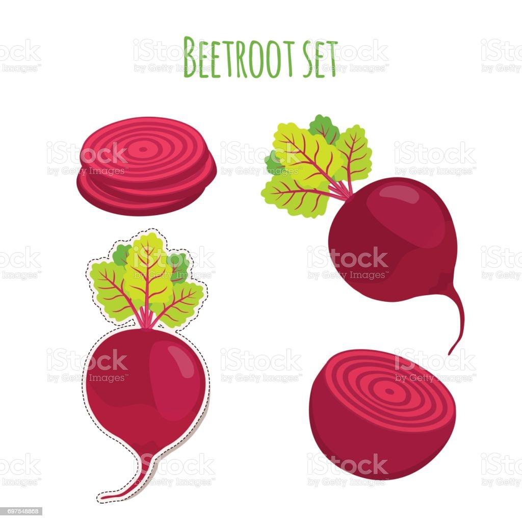 Beetroot set made in cartoon flat style. Label for market vector art illustration