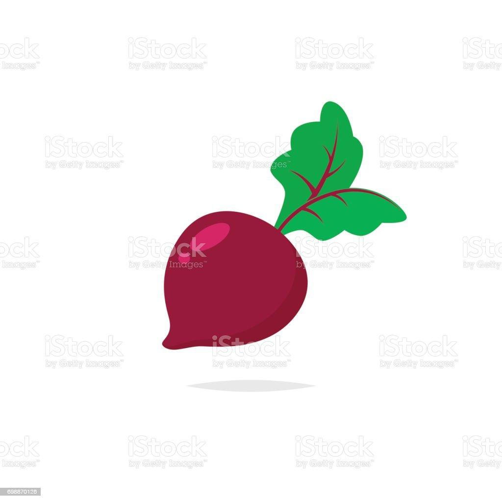 Beetroot vector isolated vector art illustration