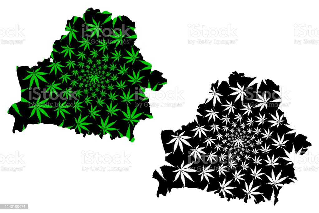 Belarus - map is designed cannabis leaf