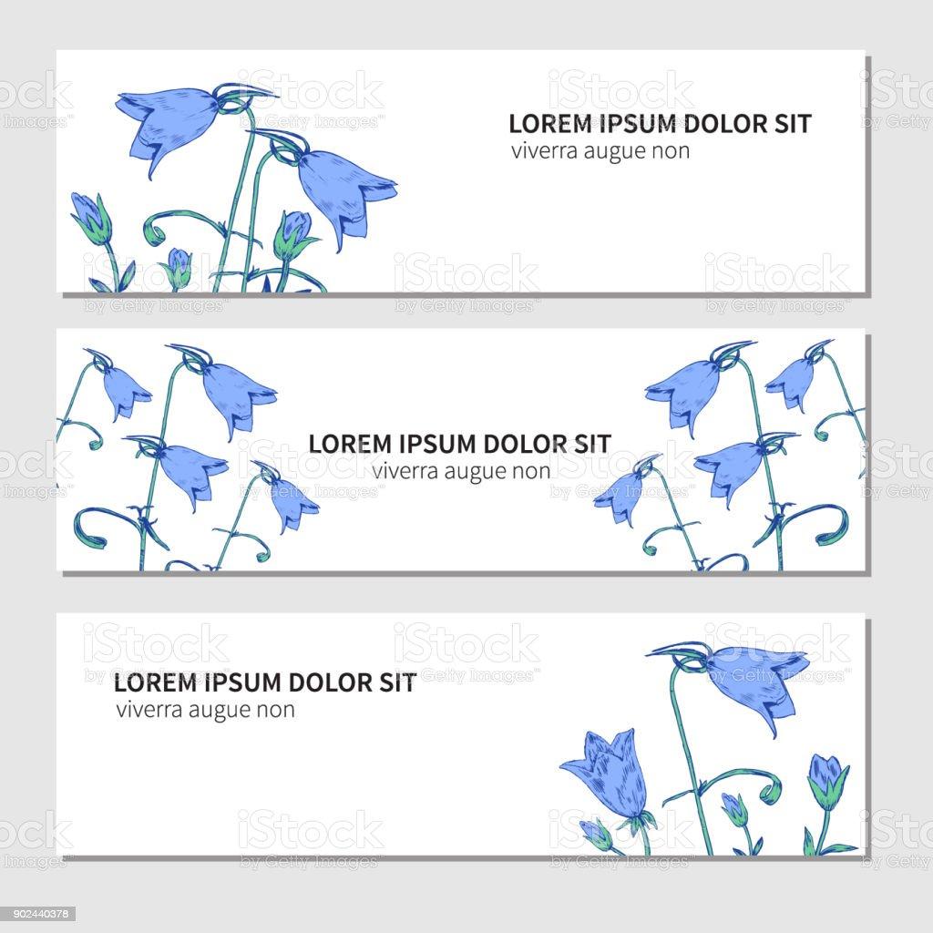 白い背景の分離された手書きスケッチを彫刻鐘花のベクトル、水平バナー、装飾的なラベル デザイン カード、包装化粧品、ハーブティー、健康雑誌、花屋 ベクターアートイラスト