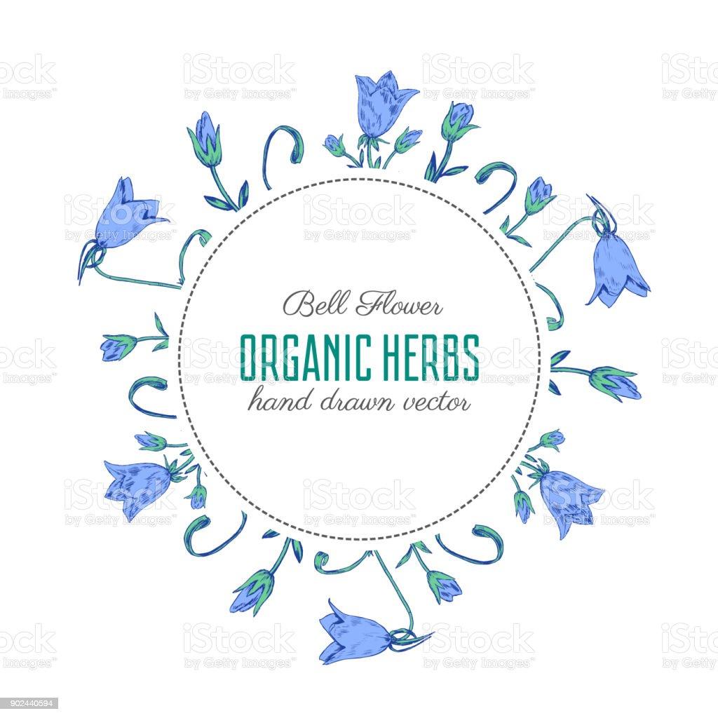 花屋花のフレーム、装飾的な花輪デザイン カード、包装化粧品、ハーブティー、健康雑誌のラウンドの白い背景の上分離された手書きスケッチを彫刻鐘花のベクトル ベクターアートイラスト