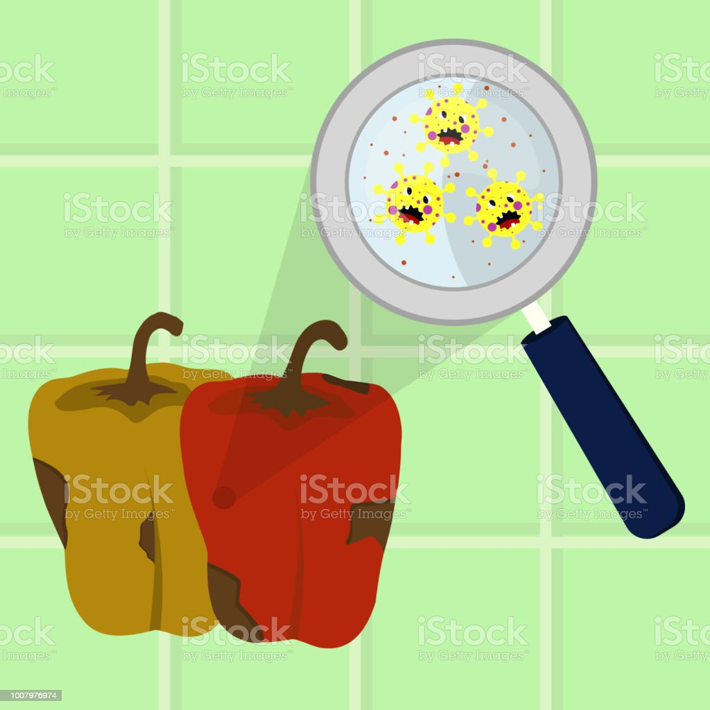 Bell Pepper contaminated with microbes vector art illustration