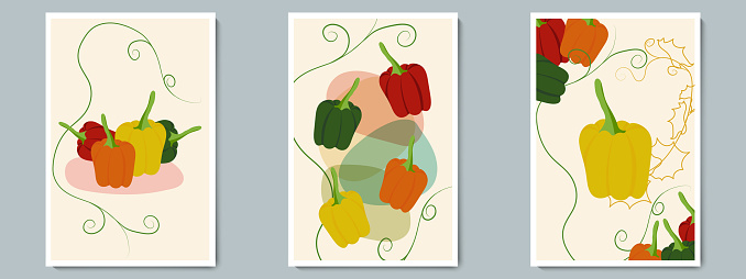 Bell Pepper Poster Set. Minimalist Vegetables with Simple Shape, Contour and Green Leaves. Vector