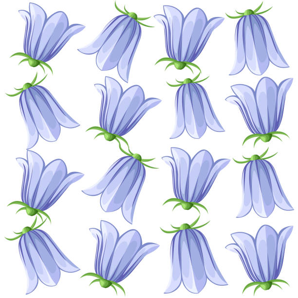 illustrazioni stock, clip art, cartoni animati e icone di tendenza di bell-flowers campanula - hand drawn vector illustration of blue bell flowers and buds on white background. colorful flowers icons set. vector isolated floral elements. - scilla