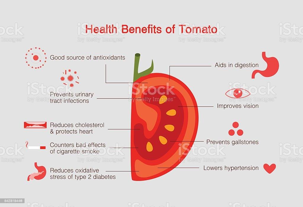 Benefits of Tomato infographic, flat design vector illustration. vector art illustration
