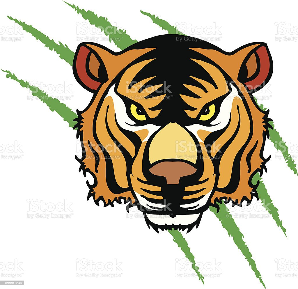 Bengal Tiger Head vector art illustration