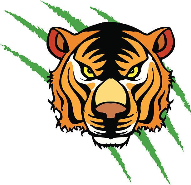 Bengal Tiger Head vector art illustration