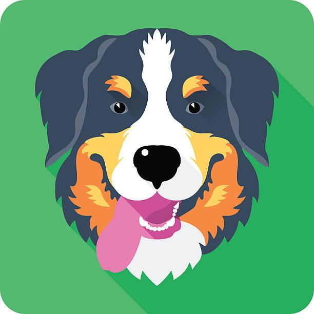 bernese Mountain Dog dog icon flat design vector art illustration
