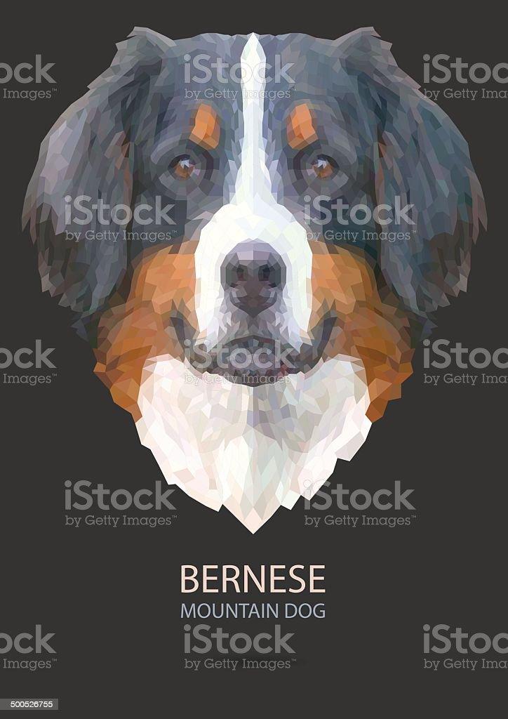 bernese mountain vector vector art illustration