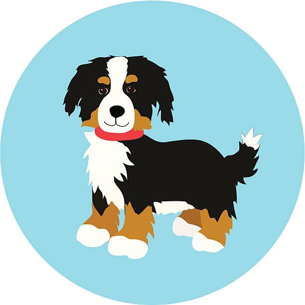 Bernese Puppy vector art illustration
