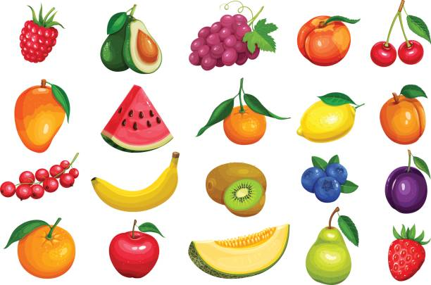 berries and fruits in cartoon style Raspberries, strawberries, grapes, currants and blueberries. Lemon, peach, apple, pear, orange watermelon avocado and melon set Vector illustration berries and fruits in cartoon style. avocado clipart stock illustrations