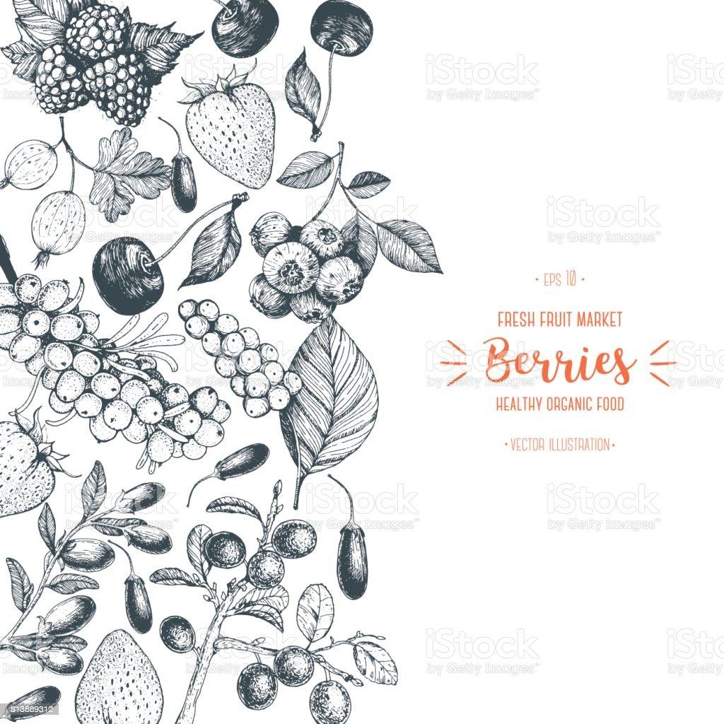 Beeren von Hand gezeichnet-Vektor-Illustration. Handgezeichnete Skizze Abbildung mit mit Kirsche, Himbeere, Preiselbeere, Berberitze, Erdbeere, Beeren Goji. Gesunde Ernährung, Entwurfsvorlage mit Beeren. – Vektorgrafik