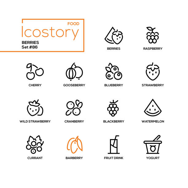 Berries - modern line design style icons set Berries - modern line design style icons set. Images of raspberry, cherry, gooseberry, blueberry, strawberry, cranberry, blackberry, watermelon, currant, barberry, drink, yogurt. Healthy food concept berry fruit stock illustrations