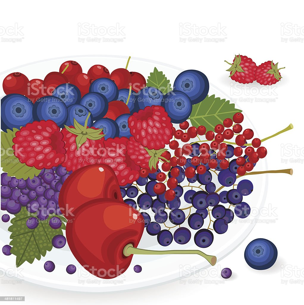 Berries On Plate royalty-free berries on plate stock vector art & more images of berry fruit