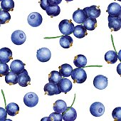 Vector seamless pattern with blackberries and black currant