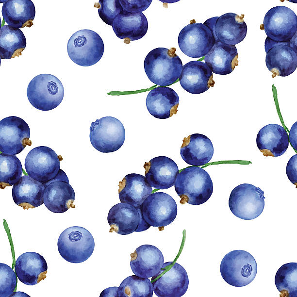 Berries seamless pattern Vector seamless pattern with blackberries and black currant black currant stock illustrations