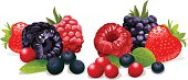 istock berries still life 160428957