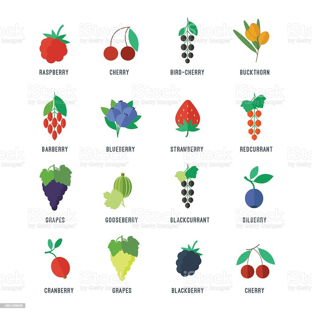 Berries vector icons set vector art illustration