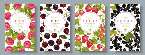Berry banners set vector art illustration